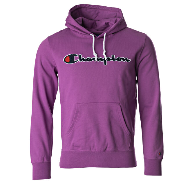 Champion Logo Hooded Sweatshirt