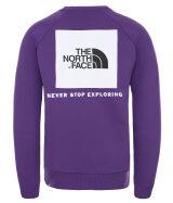 The North Face Raglan Red Box Crew