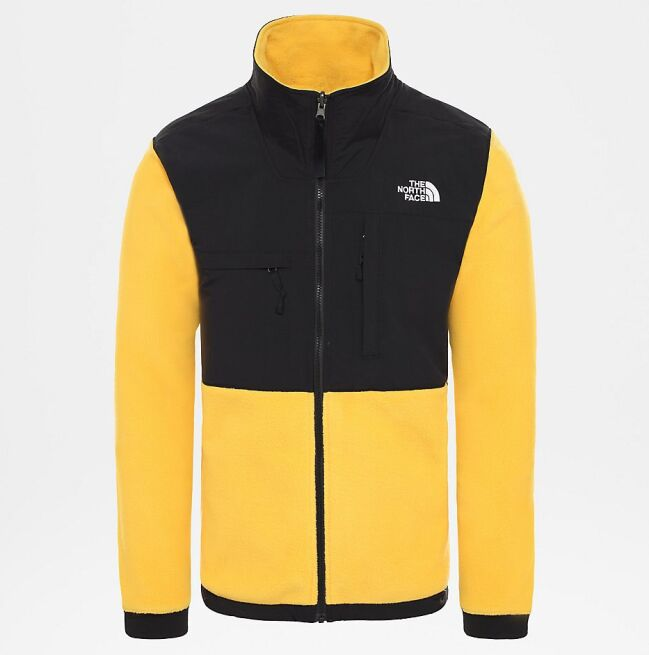 The North Face Denali Jacket 2